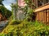 back-side-garden-3